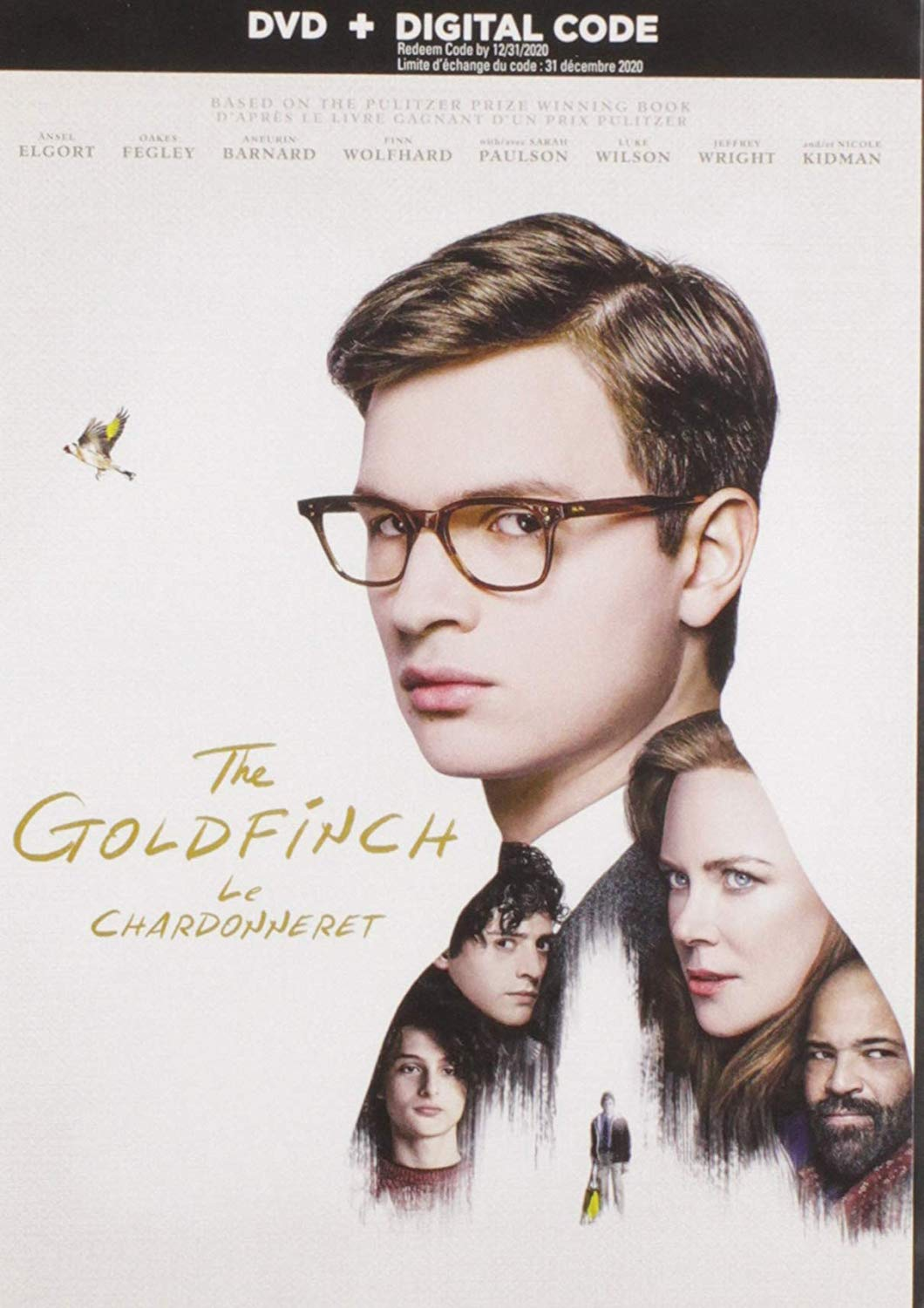 DVD: The Goldfinch