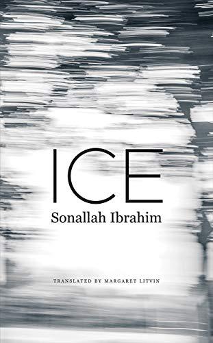 Novel: Ice