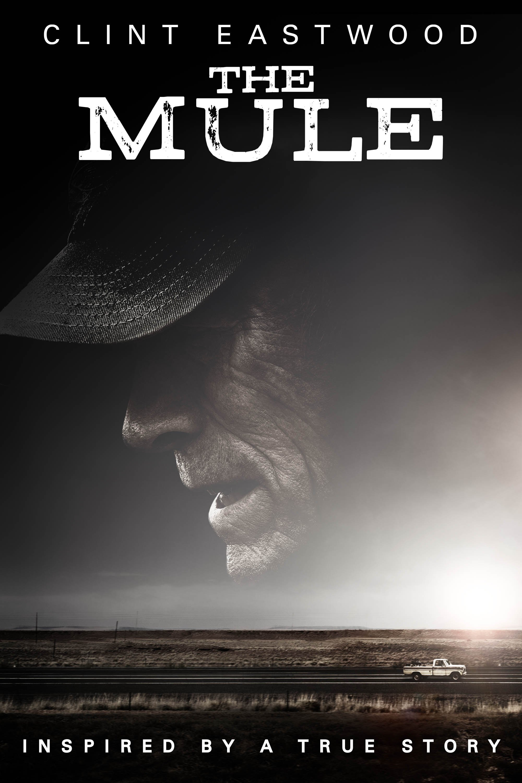 DVD: The Mule