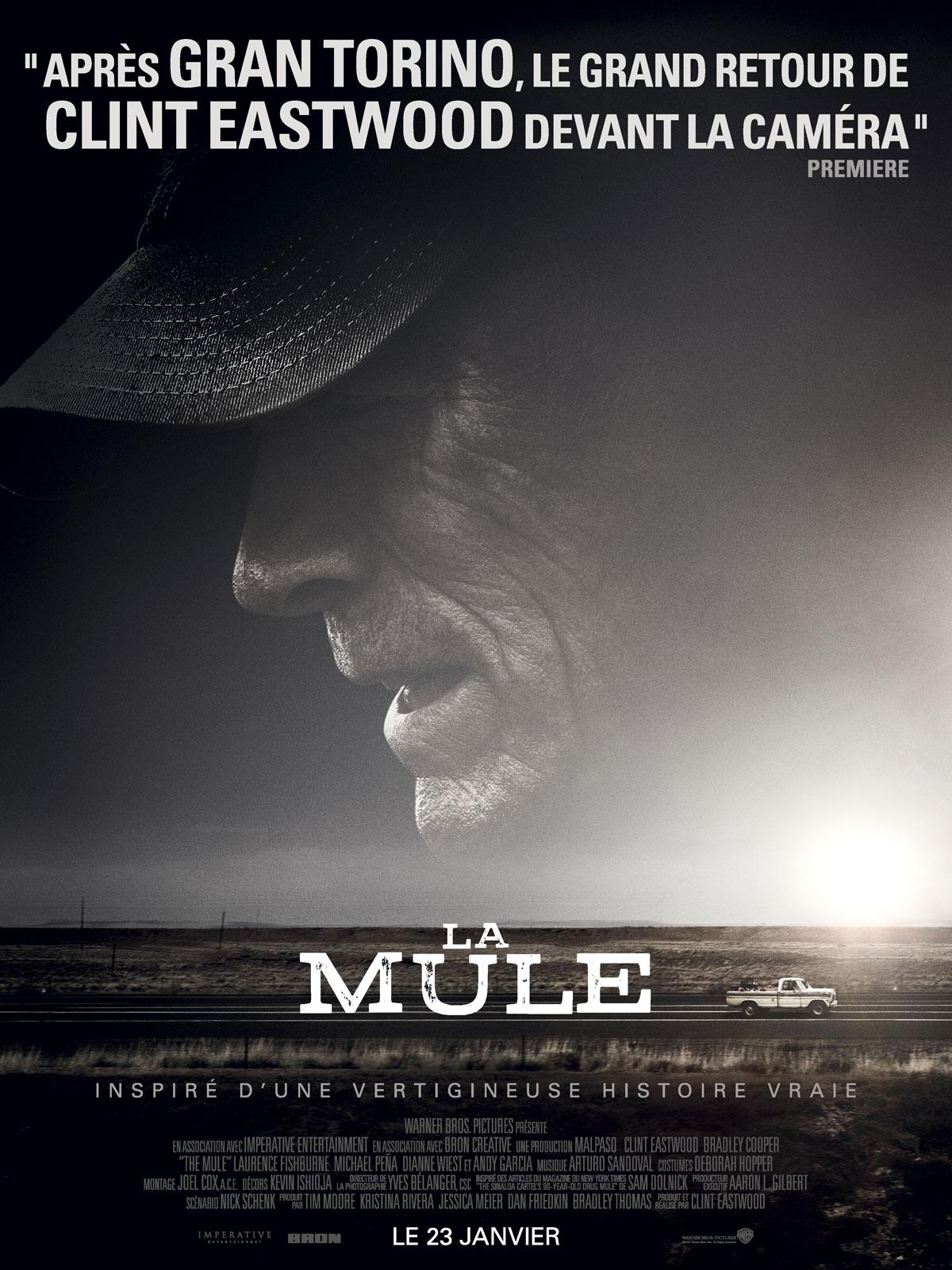 DVD : La mule