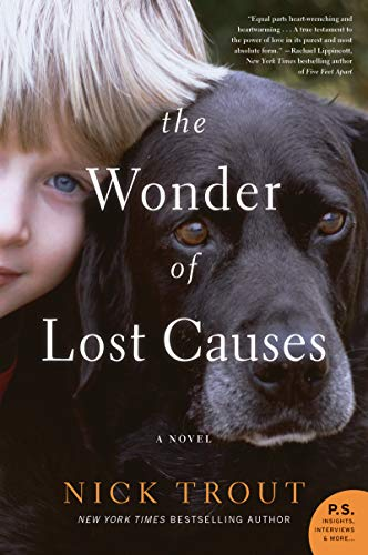 Novel: The Wonder of Lost Causes