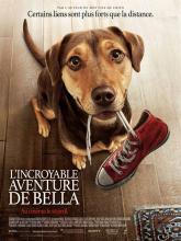 DVD : L'incroyable aventure de Bella