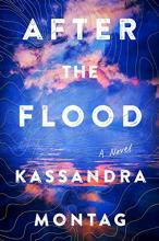 Novel: After the Flood