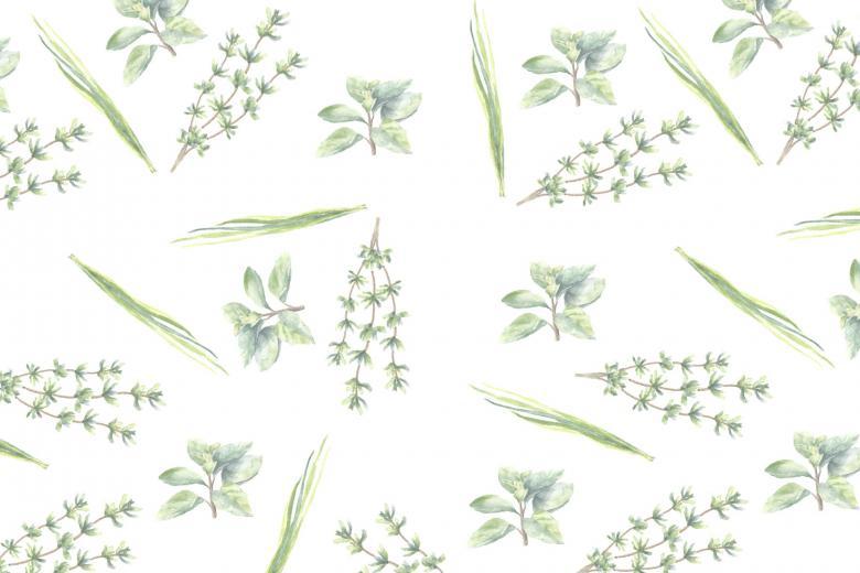 Cultivez vos propres fines herbes pour le jour de la terre for Concevez vos propres plans de maison gratuitement